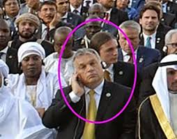 Gáspár Orbán, Erdoğan's inauguration, 2018 (Városi Kurír)